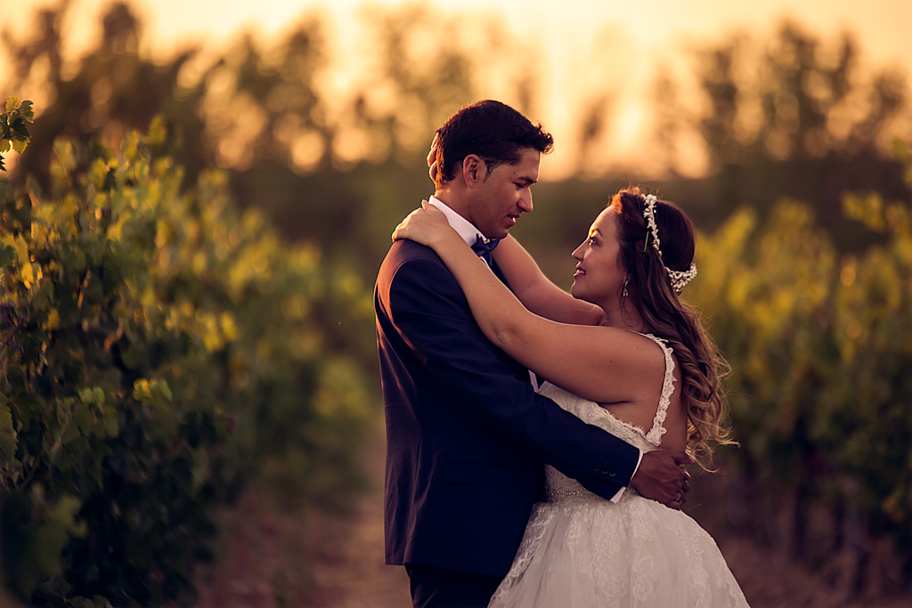 fotochitabodas - fotografia de boda Valladolid- sesion PostBoda - viñedos - fotografia de boda creativa - fotografia de boda documental